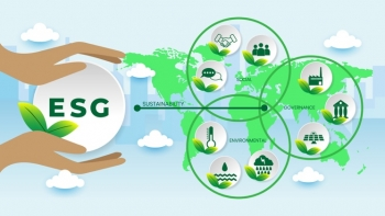 Nắm bắt xu hướng toàn cầu, các quỹ đầu tư tiên phong tìm kiếm cơ hội đầu tư ESG tại Việt Nam