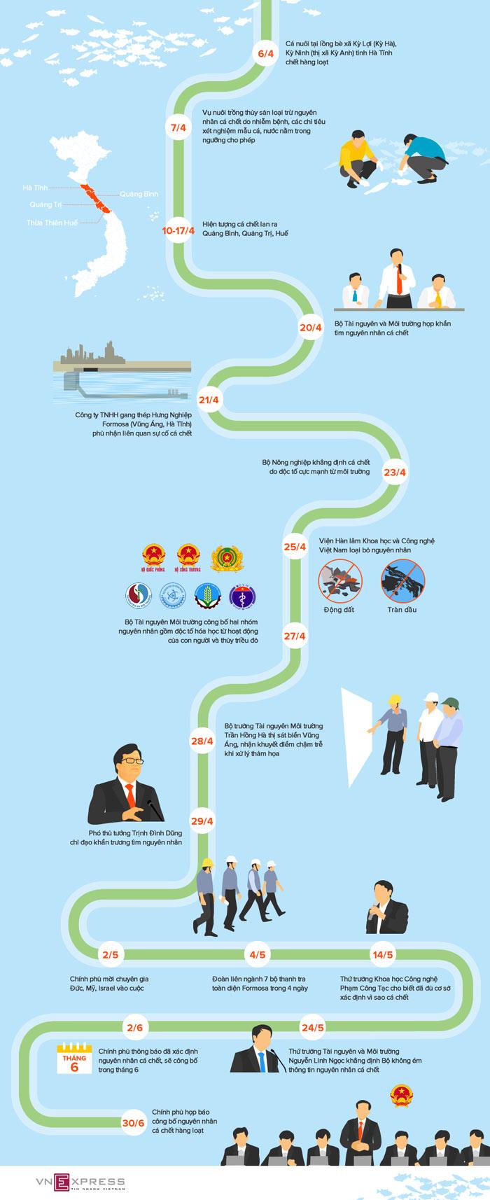 infographic 3 thang dieu tra nguyen nhan ca chet hang loat o mien trung