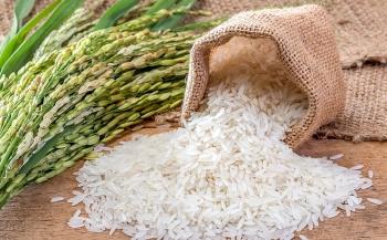 Tin tức kinh tế ngày 3/8: Phát hiện 2 chất quý hơn vàng trong gạo Quảng Trị