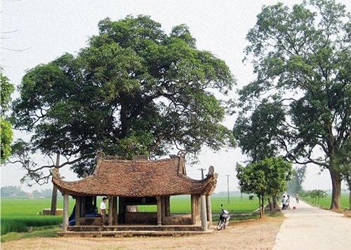 Làng Hương Ngải –Cái nôi của truyền thống làm nhà gỗ