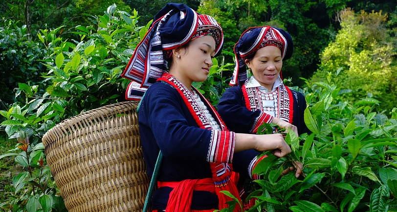 Phê duyệt Chương trình mục tiêu quốc gia phát triển kinh tế - xã hội vùng đồng bào dân tộc thiểu số và miền núi giai đoạn 2021-2030