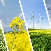 Năng lượng tái tạo sẽ sớm đạt đỉnh