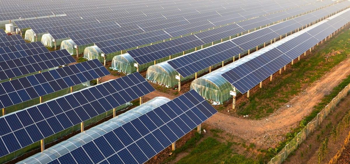 Pháp dùng thuế quan để khuyến khích phát triển điện mặt trời