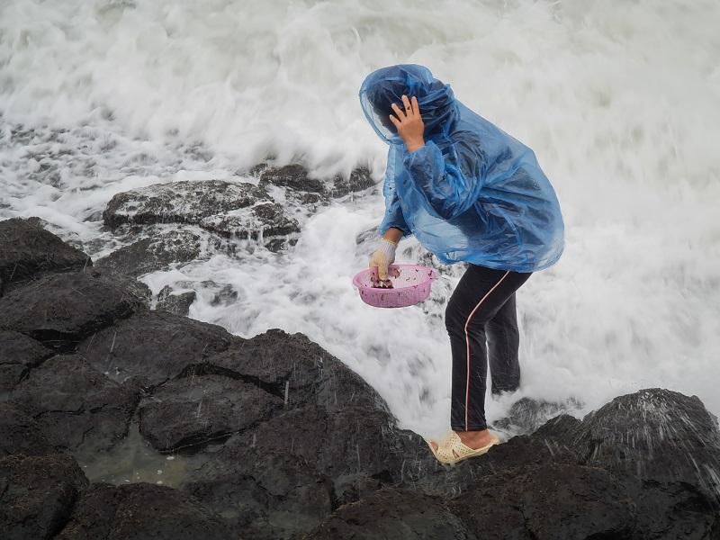 Nghề canh sóng