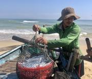 Ngư dân Quảng Nam trúng đậm mùa cá hố