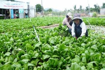 Bất bình đẳng trong thu nhập các hộ gia đình Việt Nam