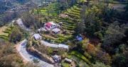 Mê mẩn trang trại bậc thang không hóa chất trên núi cao 1.500m