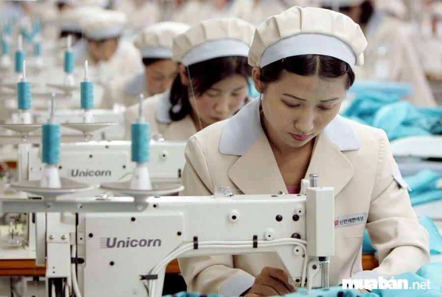 Tin tức kinh tế ngày 7/10: Váy, đầm, quần áo phụ nữ vượt ngưỡng hạn ngạch thuế quan ưu đãi xuất sang EAEU