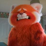 """Pixar """"nhá hàng"""" bộ phim Gấu đỏ biến hình siêu đáng yêu"""