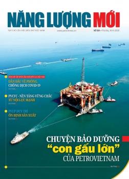 Tạp chí Năng lượng Mới - Số 13